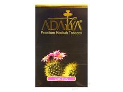 Кальянный табак Adalya CACTUS - 50 GR