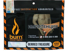 Кальянный табак Burn Beried Treasure 100 gr