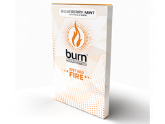 Кальянный табак Burn Blueberry Mint 100 gr