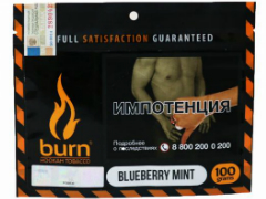 Кальянный табак Burn Blueberry Mint 100 gr