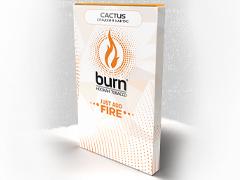 Кальянный табак Burn Cactus 100 gr