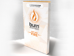 Кальянный табак Burn Chinnaboom 100 gr