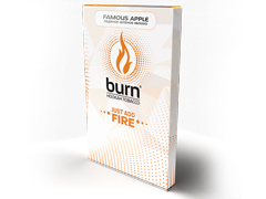 Кальянный табак Burn Famous Apple 100 gr