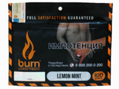 Кальянный табак Burn Lemon Mint 100 gr