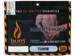 Кальянный табак Burn Tsunami 100 gr